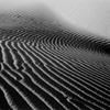 Imperial Sand Dunes #8