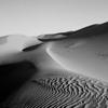 Imperial Sand Dunes #14