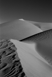 Imperial Sand Dunes #1