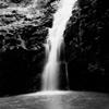 Maunawili Falls #4