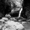 Maunawili Falls #5