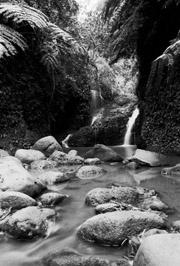 Maunawili Falls #1