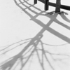 Shadows in the Snow #2