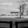 Civil War Battlefield, Manassas, VA.