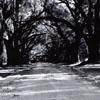 Beaufort Path